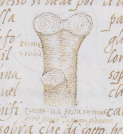 FID188
